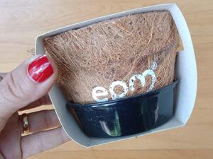 Kits de siembra para regalo: Mini huertas y bonsái