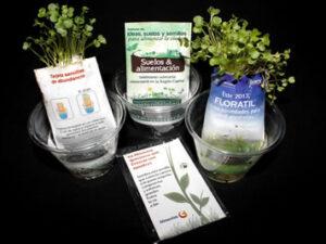 Tarjetas Vivas que germinan en agua