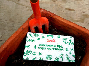 Tarjetas y etiquetas en papel germinable y papel ecológico.