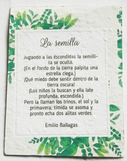 papel_con_semillas
